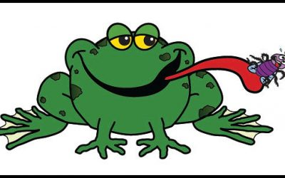Bullfrog Pest Management Member Spotlight