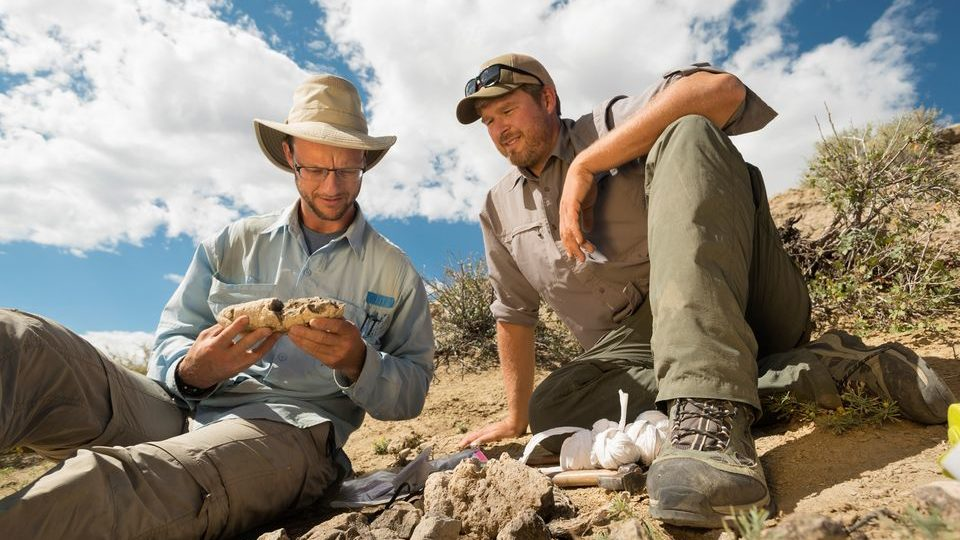 The Colorado Fossil Discovery that Rocked the World