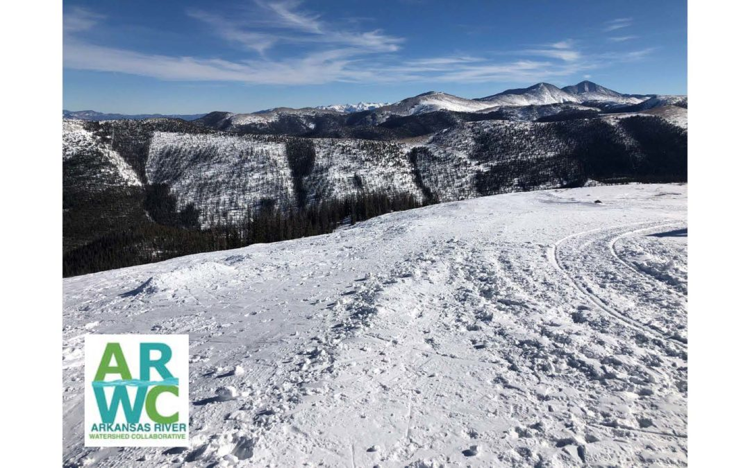 Virtual GARNA Lecture: Monarch Pass Forest & Watershed Health Project