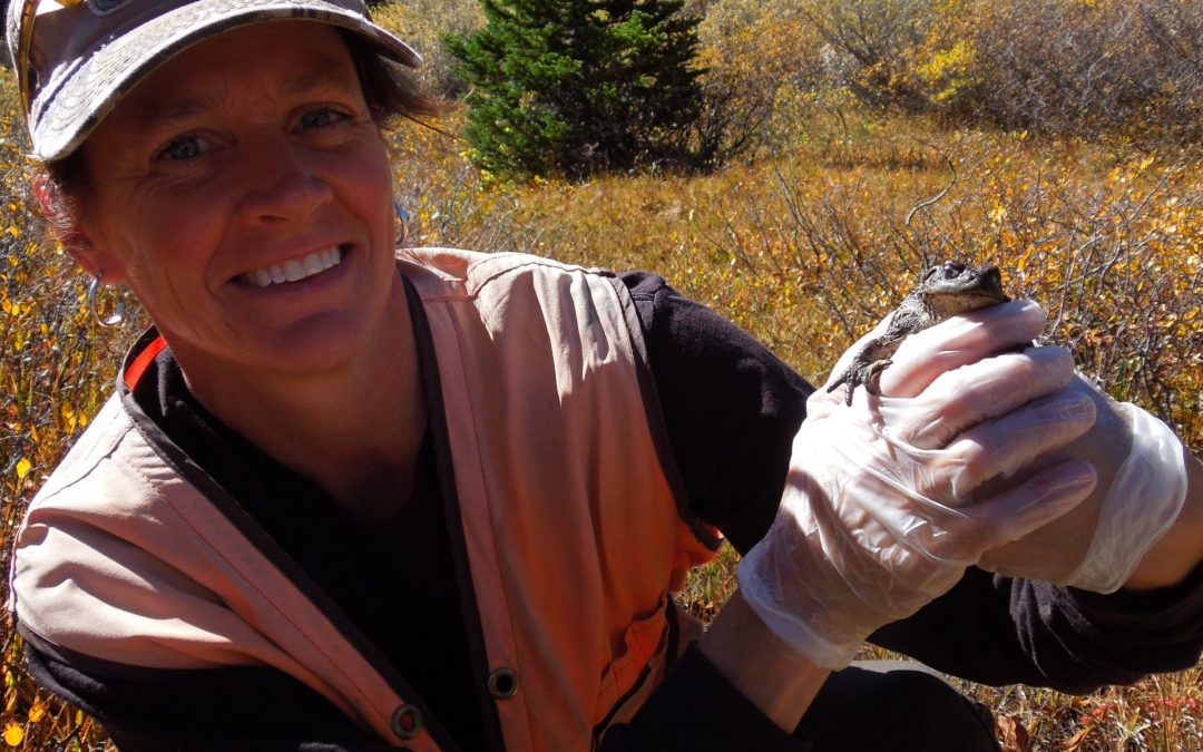 Virtual GARNA Lecture: Boreal Toad Status & Recovery Efforts