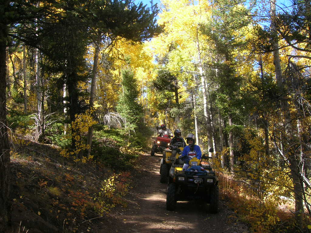 Four Mile OHV Tours