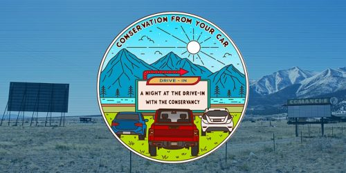 11th ANNUAL EVENT Conservation From Your Car: A Night At The Drive-In With The Conservancy